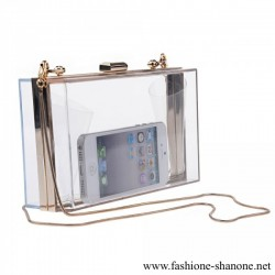 305 - Transparent evening purse